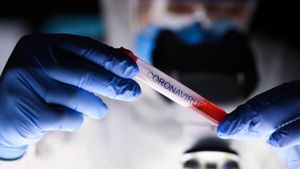 Koronavirüsün iki kuzeni tespit edildi