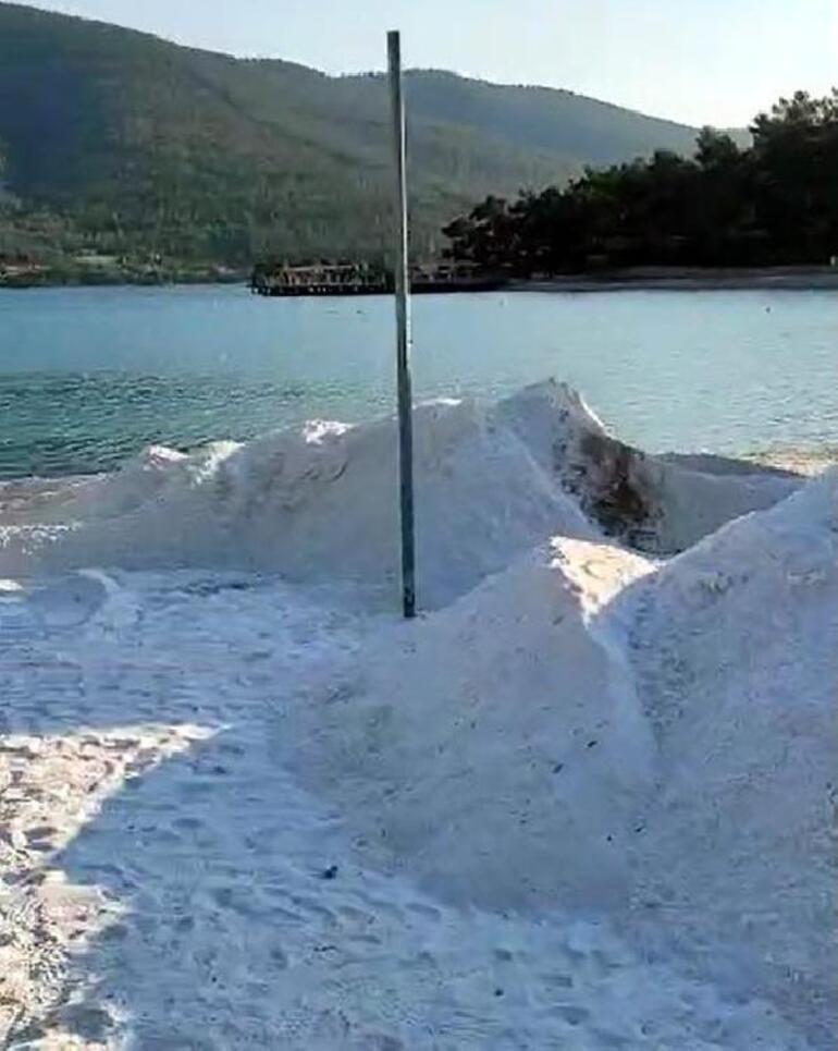 Bodrum plajlarındaki tehlike için harekete geçildi Dün sabah başladı