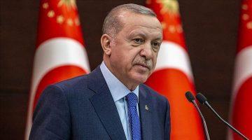 Cumhurbaşkanı Erdoğan açıkladı! Yangın alanlarıyla ilgili flaş karar