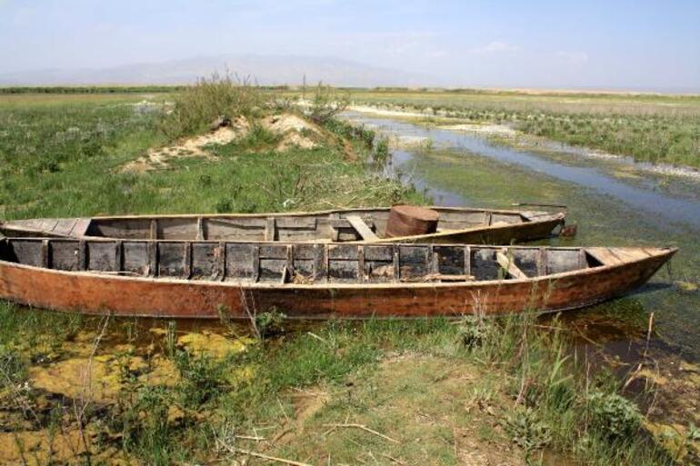 Eber Gölünde yürek burkan görüntü Büyük pişmanlık: O da canlıymış, bilemedik