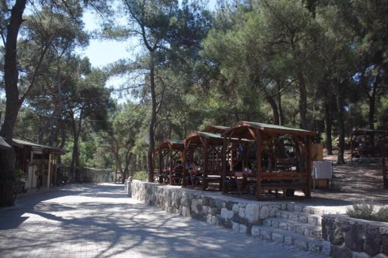 Son dakika: İzmirde flaş karar Ormanlarda piknik, mangal, yürüyüş yasaklandı
