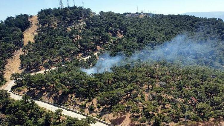 İzmir'de ormanlık alanda yangın!