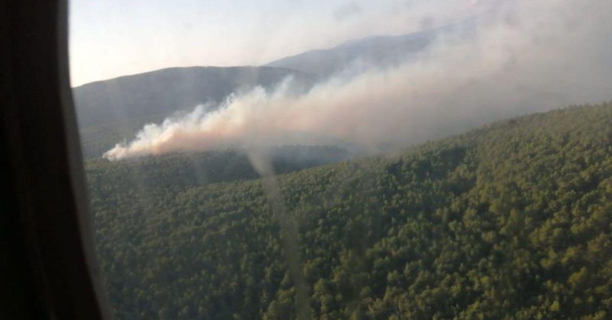 Çeşme'de orman yangını çıktı!