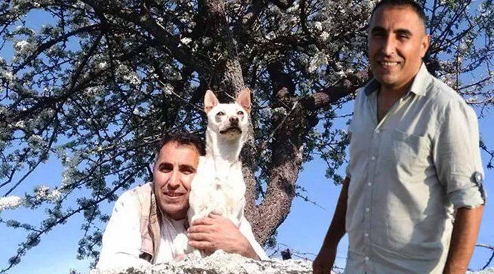 İngiliz turist servetini Türk çalışana bıraktı! Sosyal medyanın konuştuğu miras