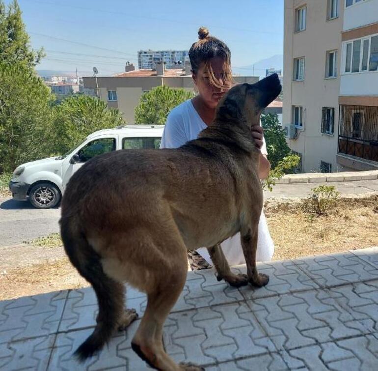 İzmirde korkunç olay Metrelerce sürükleyerek ölümüne neden oldu: Cezam varsa mahkemeye ver