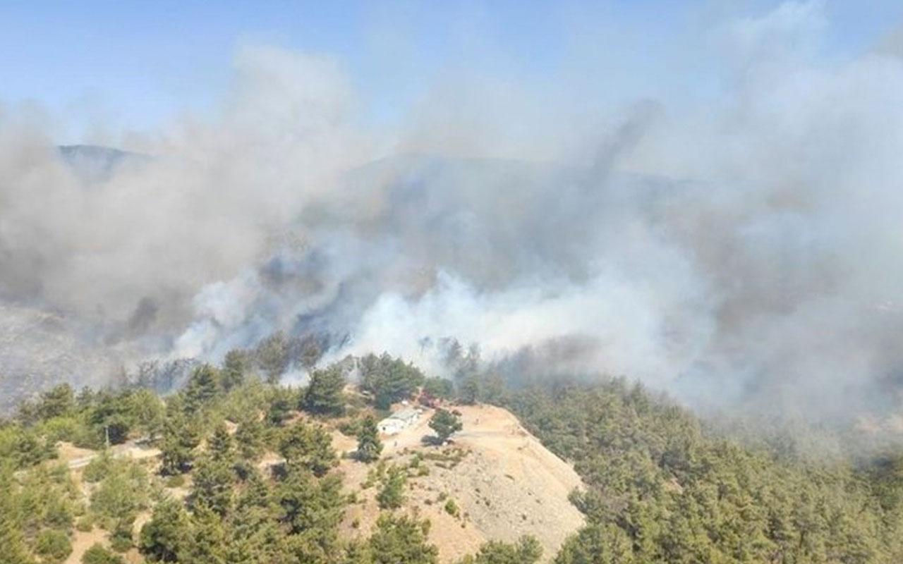 Son dakika Milas'ta orman yangını havadan ve karadan müdahale ediliyor